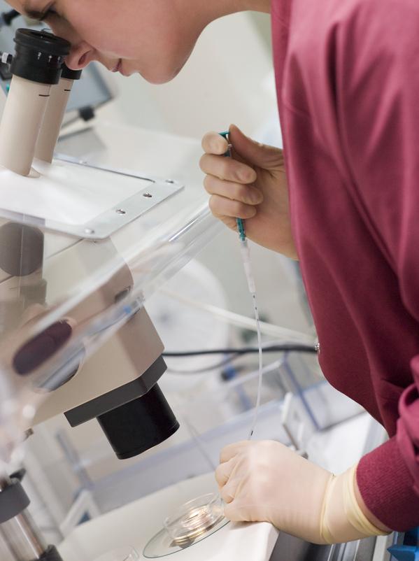 Künstliche Bedruchting Sperma Untersuchung